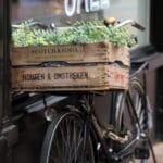 Amsterdam surroundings
