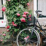 Amsterdam Midweek Adventure (2)